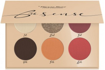 06 Colorado Springs Палетка теней Pierre Rene 6th Sense Eyeshadow Palette